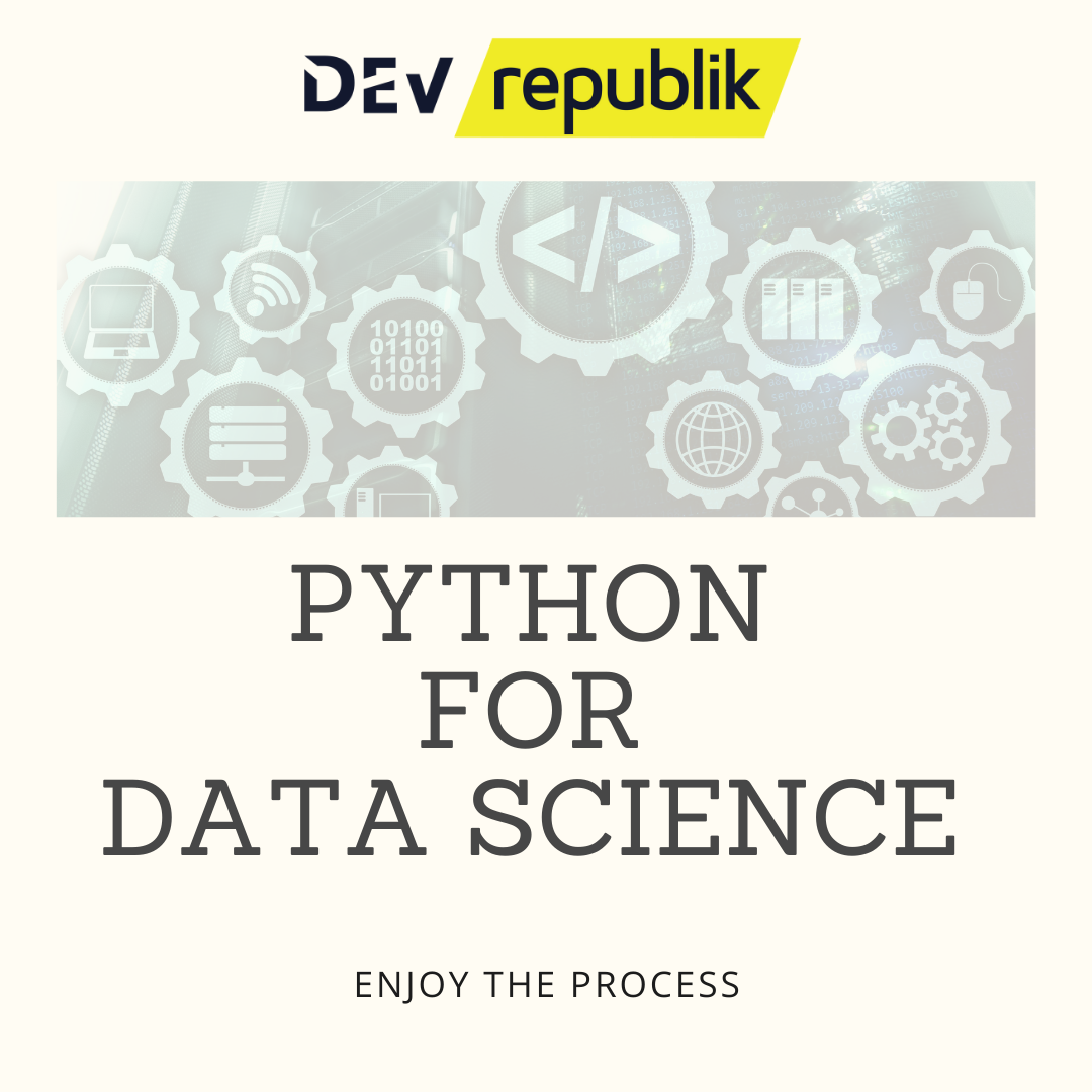 python for DS course
